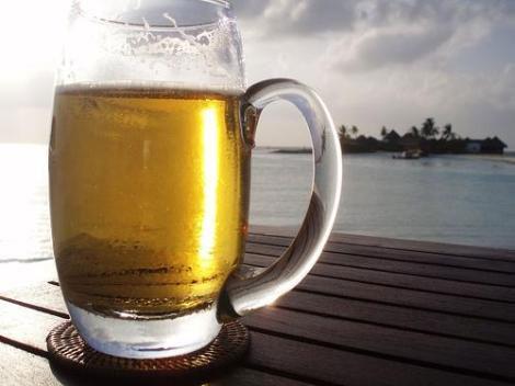 producto adelgazante a partir de residuos de levadura de cerveza